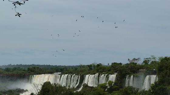 Krank auf Reisen Iguazu